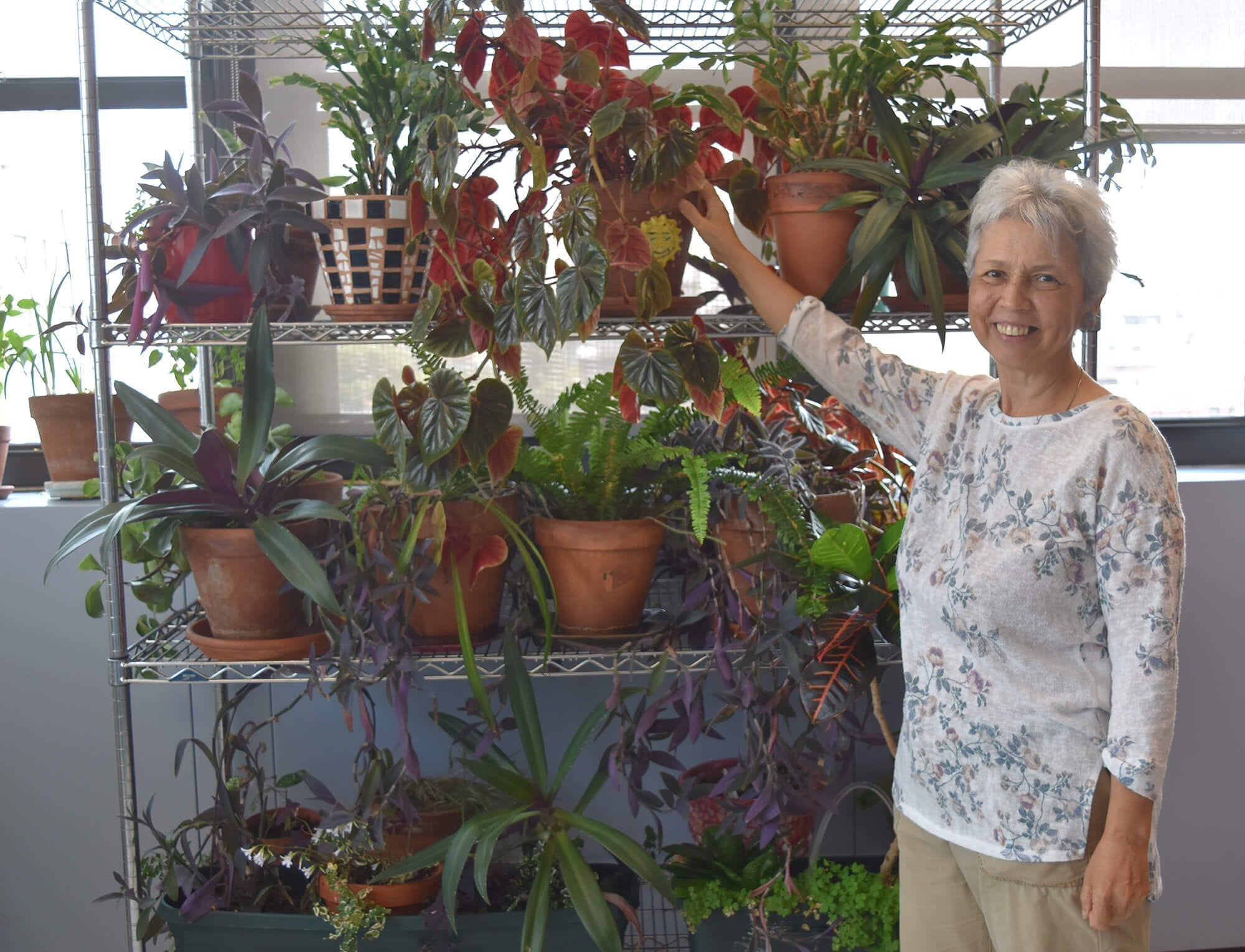 Shelves of flourishing plants about at the New York League